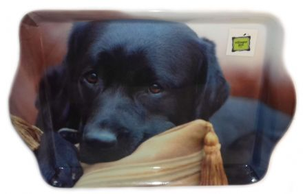 Labrador on a Cushion Small Trinket Tray